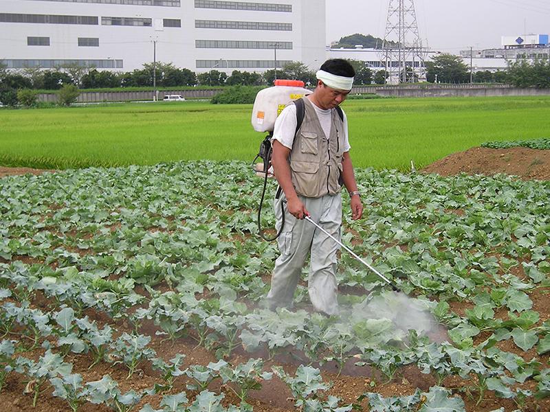 農作物を消毒している様子
